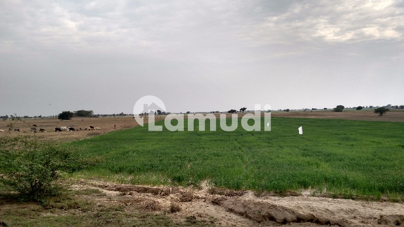 Agricultural Land For Sale - Others