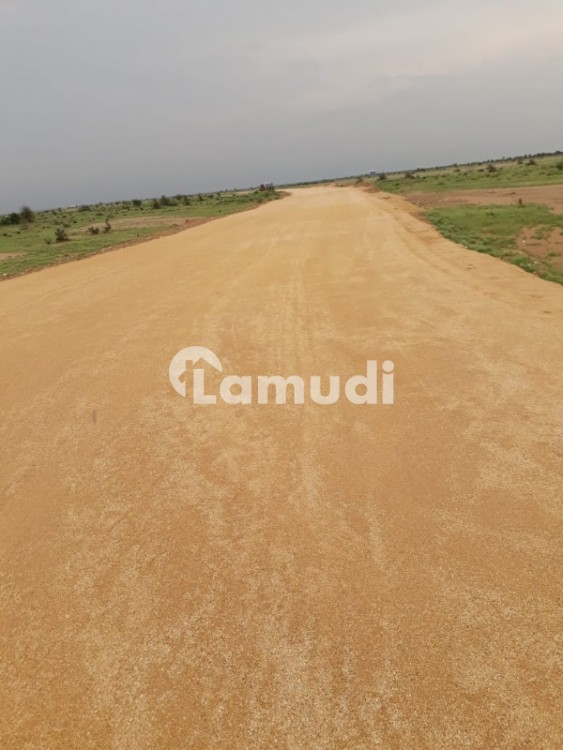 Agriculture Land For Sale - Naushahro Feroze - Moro