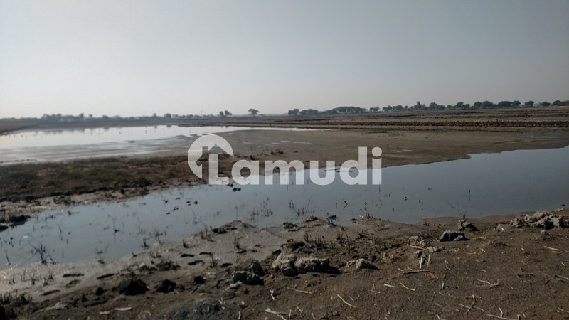 Land Is Available For Sale - Hyderabad - Badin Road