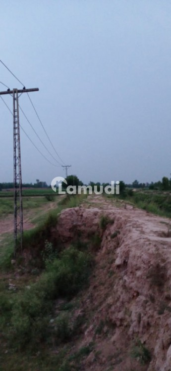 Land Is Available For Sale - Pabbi