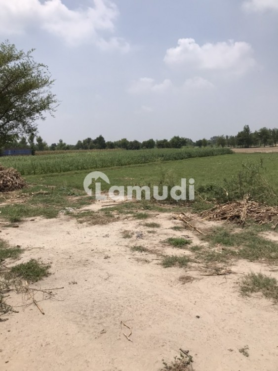 Agricultural Land Of 62 Kanal - Others