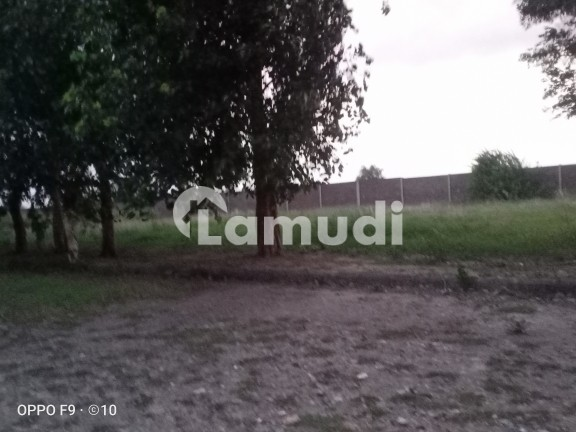 22.5 Acres Land Front 900 Feet 40 Feet Road For Sale In Muridke Road 7 KM From GT Road - Others