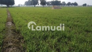 Agricultural Land Of 54000  Square Feet In Tibba Sultanpur For Sale