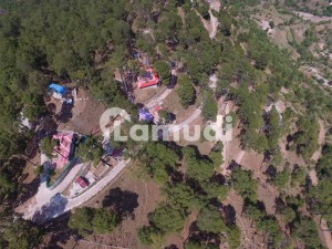 Plot For Sale In Murree On Extreme Beautiful And Peaceful Location