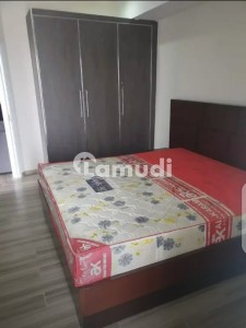 Beautiful Furnished Flats For Rent