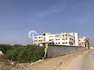 Best Location Near Industrial Park And Universities Building For Rent