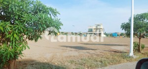 1 Kanal Corner  Park Face Plot For Sale With 5 Marla Extra Land