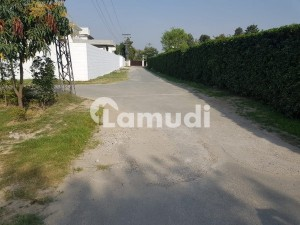 4 Kanal Farm House Land Available For Sale In Golf Lane On Bedian Road