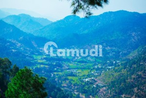4500  Square Feet Farm House Up For Sale In Pir Sohawa