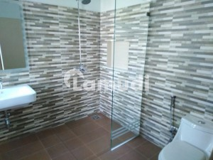 OFFER FOR BECHLOR 8 MARLA BRAND NEW BEAUTIFUL LOWER PORTION WITH BASEMENT FOR RENT IN DHA 9 TOWN