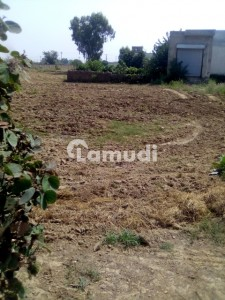 Commercial Plot Of 240 Square Feet In Wapda Town Kasur Is Available