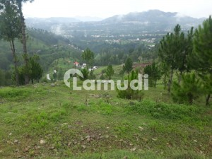 Plot Available In Abbottabad Township For Sale