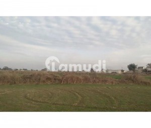67500  Square Feet Agricultural Land In Dheenda Road For Sale