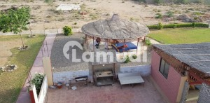 Palm Green Farm House Is Available For Sale