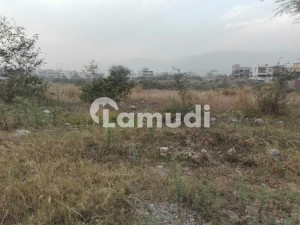 Residential Plot Is Available For Sale In D-12