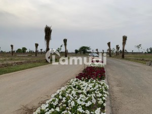 Ideal Agricultural Land For Sale In Bedian Road