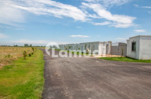 4500  Square Feet Agricultural Land For Sale In Bedian Road