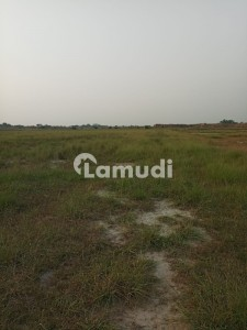Agriculture Land Is Available For Sale In Kot Radha Kishen