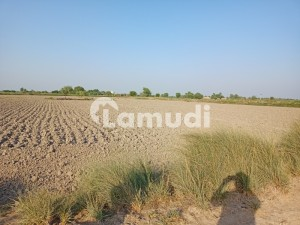 120 Acre Agriculture Land Available For Sale At Moro Sindh