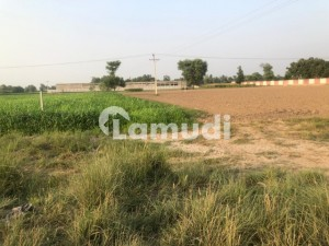 Agriculture Land Near Police Station Rojia Saddat With Electricity