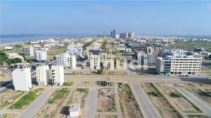 100 Yards Commercial Plot Available For Sale In Murtaza Commercial