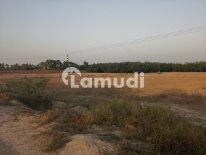 Affordable Agricultural Land For Sale In Sargodha Bypass