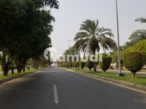 1 Kanal Residential Possession Utilities and 60ft Paid Plot  435 developed plot  builder location for sale in  Jasmine Block