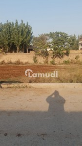 9900  Square Feet Commercial Plot In Sardargarhi Is Available