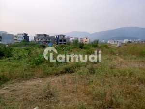 5 Marla Plot For Sale At Reasonable Price