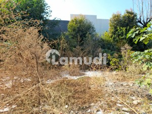 Corner Plot Is Available For Sale In F6 Islamabad