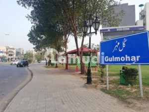 Top Class Location 10 Marla Possession Paid Residential Plot Is Available In Gulmohar Block Sector C