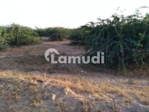 8 Acre Survey Land At Gadap Town Karachi