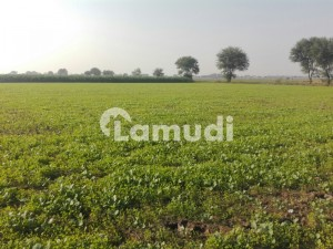Agricultural Land At 30 Km Distance From Multan City