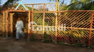2000 Square Yards Farm House Land Is Available For Sale In Gharo Thatta Sindh Pakistan