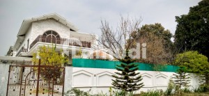 1000 Sq Yd Beautiful House Available For Rent
