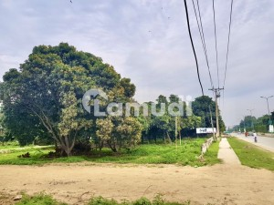 24 Marla Corner Plot Available For Sale