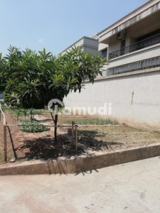 F-8 House Is Available For Sale 555 Sq Yard