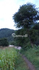 2.5 Kanal Commercial Plot Up To Nathia Gali Near Changla Gali Top