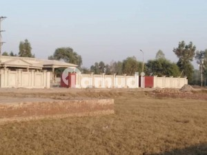 15 Marla Plot For Sale Hassan Garden Chak 36 NB