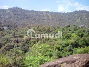 4500  Square Feet Residential Plot Ideally Situated In D-12