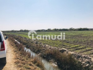 8 Acre Agricultural Fertile Land At Gharo For Sale