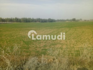 250 Kanal Ideal Location Land On Cpec Road & Link Road For Sale