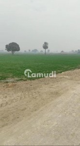 Agricultural Land US Available For Sale