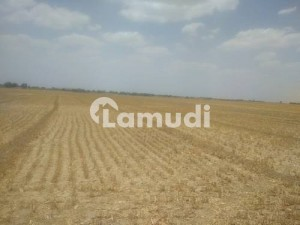 5 Kanal Plot For Rent 500 Meter Away From Main Multan Road