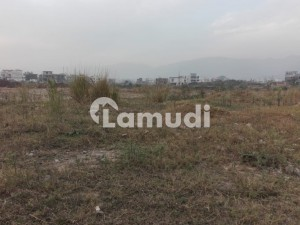 Residential Plot Of 3150 Square Feet In D-12 Is Available