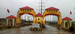 You Can Find A Gorgeous Commercial Plot For Sale In Pechs