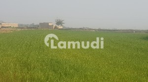 900000  Square Feet Agricultural Land In Attock Road