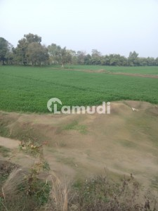 4 Kanal Farmhouse  Land For Sale Bedian Road
