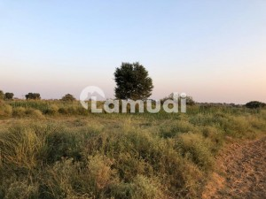 Ideal Agricultural Land Is Available For Sale In Rawalpindi