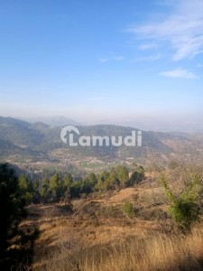 Agricultural And Tourist Land For Sale